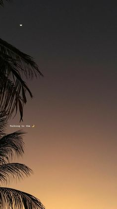Fondos Whatsapp - Fushion News Tumblr Wallpaper, Screen Wallpaper, Wallpaper Quotes, Aesthetic Iphone Wallpaper, Aesthetic Wallpapers, Aesthetic Backgrounds, Phone Backgrounds, Wallpaper Backgrounds, Nature Wallpaper