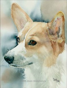 PEMBROKE WELSH CORGI Dog 11x15 Signed by steinwatercolors on Etsy, $40.00