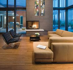 Two-sided fireplace perfect for this spacious living room with large glass enclosure
