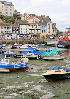 12 Brixham Marina, Ruth's coastal walk, around Tor Bay Places To Travel, Places To Go, Devon Holidays, South West Coast Path, South Devon, Devon And Cornwall, Seaside Beach, Kingdom Of Great Britain, Fishing Villages