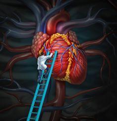 Čistič krve! Uzdravte vaše srdce, tepny, mozek a další orgány s tímto jednoduchým receptem!