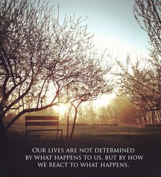 """Backyard Sunrise Quote """"Our lives are not determined..."""""""
