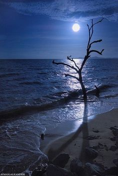 I stand here, alone.  There is no good reason I find myself in this place......but I look up to see the moon who keeps me company.  I look out to see the ocean which comforts my spirit.......I am happy.