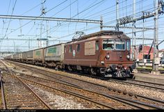 RailPictures.Net Photo: Re 4/4 176 BLS Cargo Re 4/4 at Pratteln, Switzerland by Jean Vernet