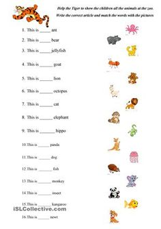 It's a fun worksheet based on the ABC Animals vocabulary sheet. Children have to write the correct article and help the Tiger to name all the animals in the zoo in a proper way - ESL worksheets