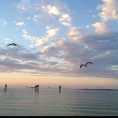 Gulf Shores National Seashore, FL