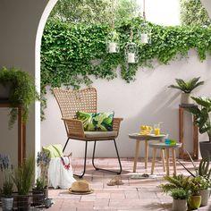 Finestra Specchio E Rampicante Fiori E Giardino Garden