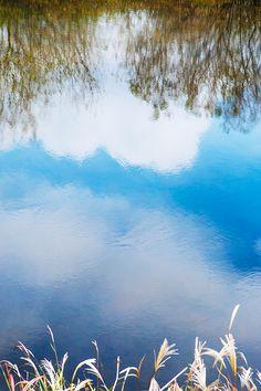2015.11.19 Free Photo : 이달의 #무료이미지, #배경화면, #윤익이미지, #yooniqimages