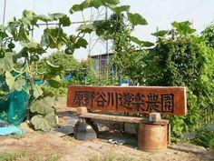 原野谷川遊楽農園