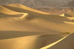 Desert Dune Photography Sand Dunes of Death by MorrisClassics