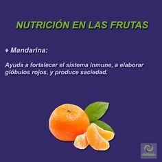 Mandarina: Rica en vitamina C y flavonoides, y fuente de ácido fólico. Ayuda a fortalecer el sistema inmune, a elaborar glóbulos rojos, y produce saciedad. #VyAR #VitalidadFísica #RicardoSaavedra