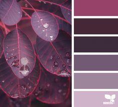 Color Season featuring purple leaves and hues Design Seeds, Colour Pallette, Colour Schemes, Color Combos, Purple Color Palettes, Palette Design, Color Palette Challenge, Color Balance, Decoration Design