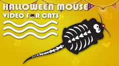 CAT GAMES - Halloween Mouse! Video for Cats to Watch. More Videos for Cats: http://www.tvbini.com  #catTV #TVforcats #tvbini #movieforcats #entertainmentforcats #catgames #videoforcats #cats #pets #videosforcats #catentertainment #crazycatlady