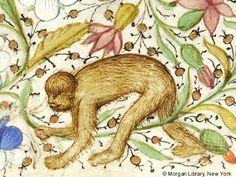 Monkey | Book of Hours | France, Angers or Nantes | ca. 1440 | The Morgan Library & Museum