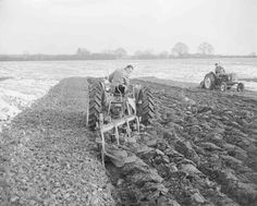 Agriculture, Farming, Old Tractors, Farm Life, Past, January, David, Black And White, Brown