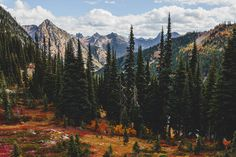 Brilliant fall colors spreading across North Cascades National Park's Heather Maple Pass Loop.  More adventures: www.brianstowell.com Instagram: @brianstowell Tumblr: @brianstowell Facebook: /brianstowellphoto 500px: /brianstowell