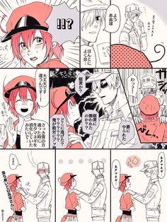 "⚪️すの子🔴 on Twitter: ""◆白赤 泣いてる赤血球ちゃんに偶然エンカウントした白血球さんのリクエスト頂いたので描いて見ました〜〜❣️セコム発動しそうだなぁと…… "" Art Manga, Anime Manga, Cute Comics, Funny Comics, Blood Anime, Manga Story, White Blood Cells, Anime Life, Anime Kawaii"