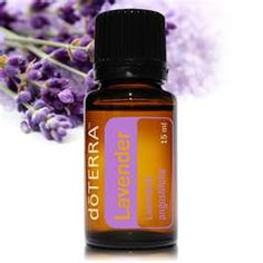 Essential Oils to improve how your house smells