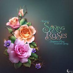 """Moonbeam's """"Spring Roses"""""""
