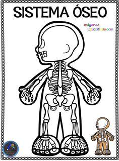 Cuaderno del Cuerpo Humano para colorear - Imagenes Educativas Science Fair Projects, Science Lessons, School Projects, Elementary Science, Science For Kids, Science And Nature, Kindergarten Activities, Science Activities, Activities For Kids