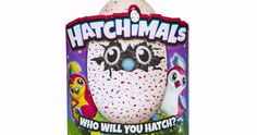 One woman finds where you can still buy Hatchimals. They're the toy every child wants this Christmas. And so the toy every parent has been desperate to get hold of. Hatchimals. A furry little creature that hatches itself out of its egg and then waits for you to 'train' it and 'feed' it.