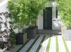 Driveway with grass stripes
