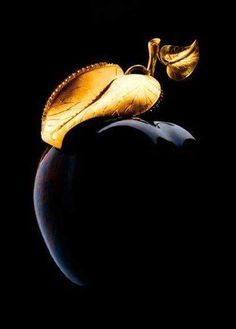 Black and gold apple image via Inspiration Lane Black Is Beautiful, Beautiful Images, Black Art, Black And White, Color Black, Total Black, Black Onyx, Snow White, Or Noir
