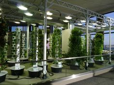 177 Best Hydroponic Gardening Images Hydroponic 400 x 300