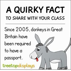 A quirky fact about donkeys to share with your class - from Treetop Displays. Visit our TpT store for printable resources by clicking on the provided links. Designed by teachers for Pre-Kindergarten to Grade. Animal Facts For Kids, Fun Facts For Kids, Fun Facts About Animals, Teaching Quotes, Teaching Tips, Funny Facts, Weird Facts, Animal Adaptations, Unusual Facts