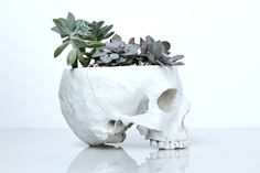 http://sosuperawesome.com/post/156153956747/pawpricez-sosuperawesome-skull-planters-by