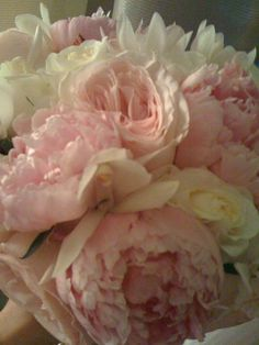 Flowers, Pink, Bouquet, White, Peonies