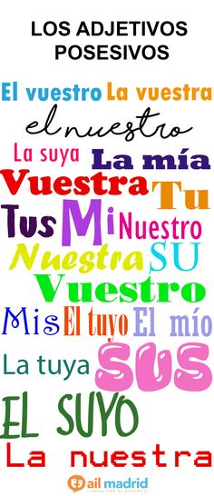 #Learn the possessive adjectives in #Spanish! // ¡#Aprende los adjetivos posesivos en #Español!