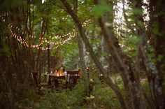 forest dining ~ love it!