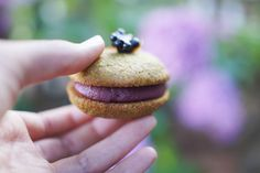 Turmeric Cookie & Blackberry Cream Sandwich — Dessert Medicine