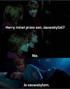 Harry Potter Mems, Rowling Harry Potter, Harry Potter Facts, Tom Felton, Drarry, Draco Malfoy, Hogwarts, Funny Memes, Lol