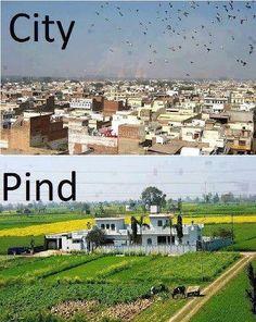 City vs. Pind? No question!