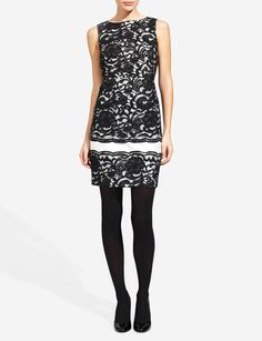 Lace Sheath Dress | Women's Dresses | THE LIMITED