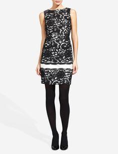 Lace Sheath Dress | Women's Dresses | THE LIMITED