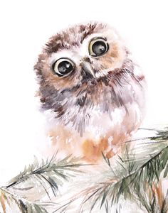 Owl Print Watercolor Painting Bird Painting by CanotStopPrints