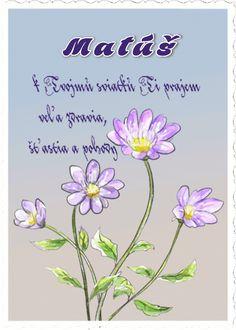 Matúš k Tvojmu sviatku Ti prajem veľa zdravia, šťastia a pohody.
