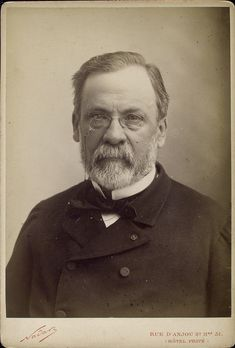 Portrait of scientist Louis Pasteur France 1902 - New Law - Urlaubsorte Marnes La Coquette, Louis Pasteur, Extraordinary People, Science Photos, Important People, Special People, Famous Faces, Historical Photos, Photo Library