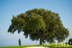 """First Look"" at Los Verdes Golf Course photo by Studio EMP"