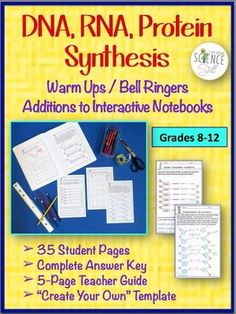 Biology Interactive Notebook, Warm Ups, Bell Ringers: DNA, RNA, and Protein Synthesis #DNA #proteinsynthesis