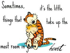 """""""Sometimes, it's the little things that take up the most room in your heart / Calvin and Hobbes quotes / #blessings #gratitude"""