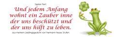 "Signiertext (5) Veganes Kochbuch ""ab und zu vegan-4-you"" (www.vegan-4-you)"