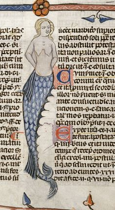* Mermaid. detail. France 13-14th cent Royal 10 E IV Detail of a bas-de-page scene of a mermaid. France S. (Toulouse?) British Library