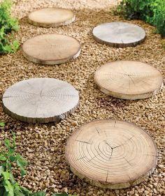 """Great fakes: our Faux Bois Stepping Stones so closely replicate the masterwork of Mother Nature, it's hard to tell the difference until you're up close. Each """"slice of tree stump"""" has been skillfully molded and hand-painted for authenticity. Resistant to decay, they make an interesting pathway designed to last for seasons to come. Fish Garden, Garden Oasis, Lawn And Garden, Outdoor Statues, Outdoor Sculpture, Garden Statues, Tall Planters, Square Planters, Tree Stump Table"""