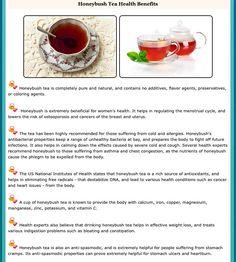 Honeybush Tea Benefits, seriously, who knew? Tea Facts, Tea Benefits, Health Benefits, My Tea, Herbal Tea, Tea Recipes, Afternoon Tea, Health And Wellness, Herbalism