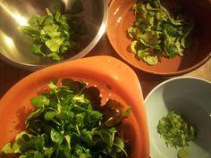 #Feldsalat waschen und mit Olivenöl anmachen, damit er ein paar Tage im Kühlschrank übersteht.