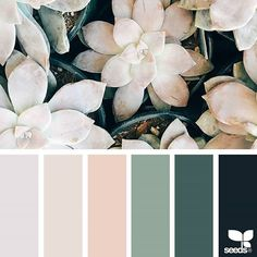 Apartment color schemes design seeds Ideas for 2019 Apartment Color Schemes, Bedroom Color Schemes, Bedroom Colors, Bedroom Color Palettes, Neutral Color Palettes, Interior Design Color Schemes, Neutral Colors, Bedroom Decor, Colour Schemes For Living Room